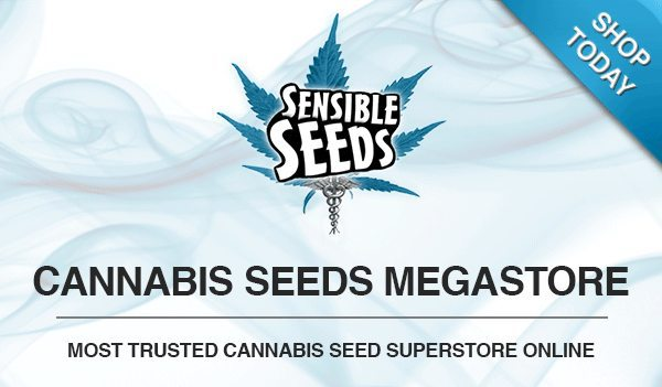 Sensible seed bank review