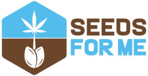 Top 13 Best USA Seed Bank - Reputed American Seed banks