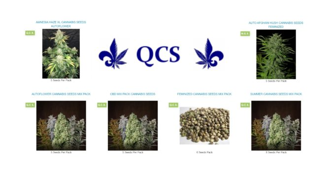 Quebec Cannabis Seeds Review
