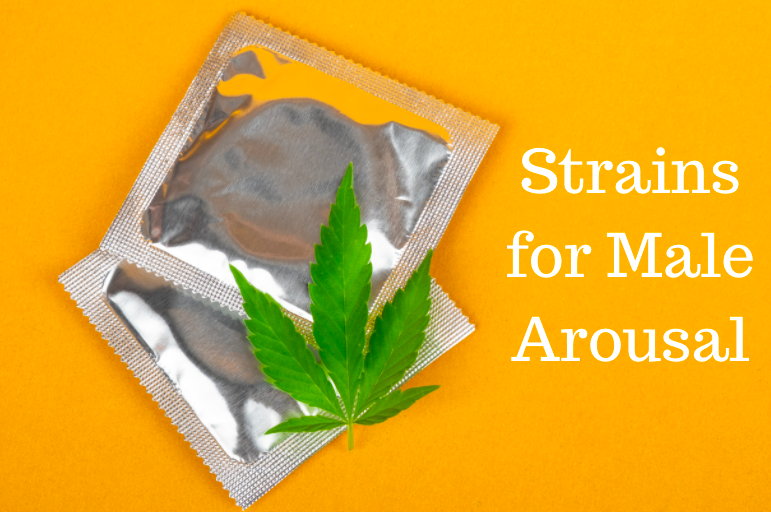 Best Strains for Male Arousal